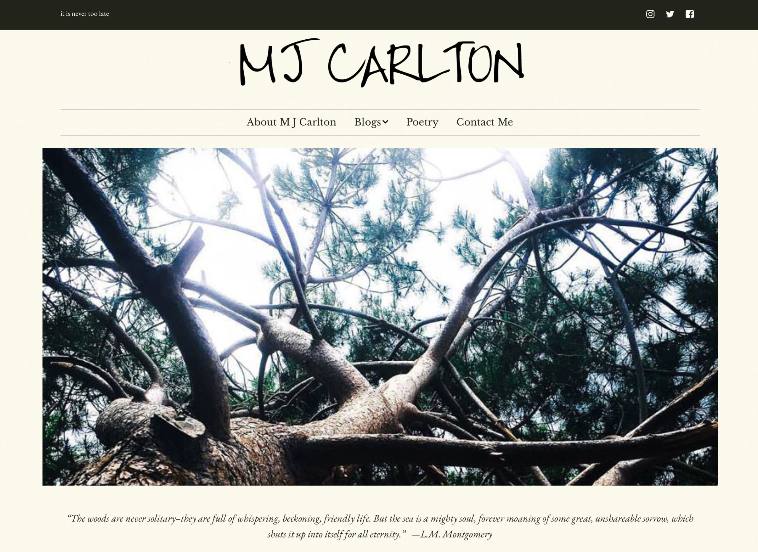MJ Carlton Author Website